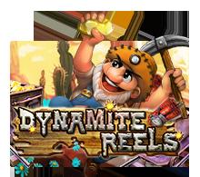 dynamitereelsgw