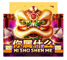 nishushenme