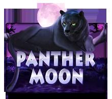 panthermoon