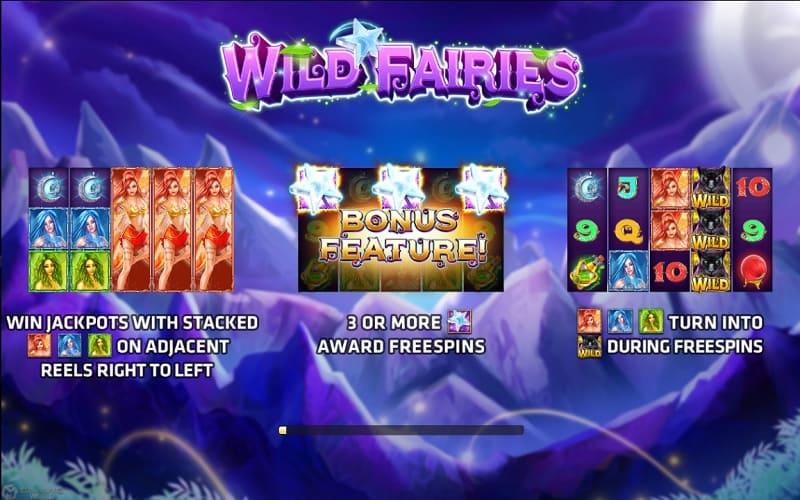 Wild Fairies-รีวิวเกม
