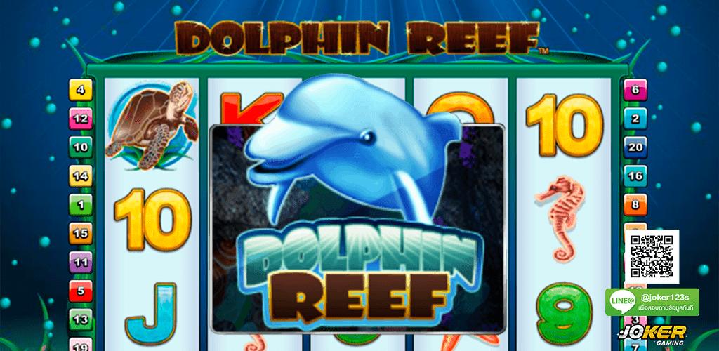 ทดลองเล่น Dolphin Reef ปก3