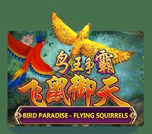 ทดลองเล่น เกมสล็อต  Bird Paradise เกมยิงนก 2021 | JOKER123